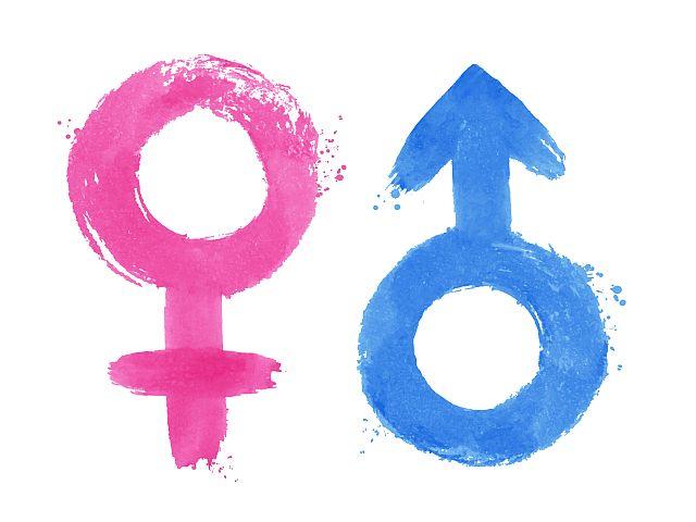 Die Zeichen der beiden Geschlechter männlich und weiblich.